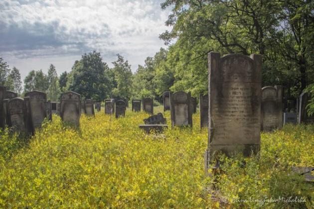 Łódź – Nowy Cmentarz Żydowski